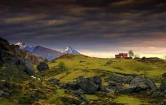 Serene and calming (steinliland) Tags: summer mountains cabin sheep hills whatever lofotenislands rocs steinliland 100commentgroup