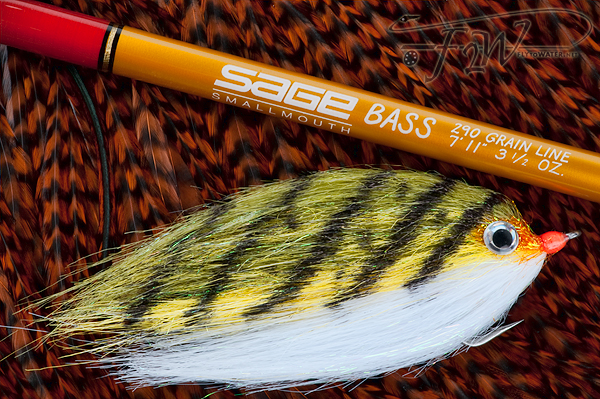 Sage Bass Smallmouth & Perch Fly