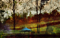 Reflecting Fall in cold and cloudy water (Ekler) Tags: park cold tree art fall nature water bench painting reflecting spring poem cloudy picture like photoart svetlana refelction stowers olympuse410 casibo soloha