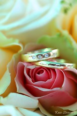 On a bed off roses  wedding photography (kees straver (will be back online soon friends)) Tags: flowers wedding roses portrait flower love amsterdam rose canon gold groom bride ceremony nederland marriage rings bouquet leafs huwelijk trouwen bruiloft diamantes bruid bruidegom mywinners canoneos5dmarkii keesstraver