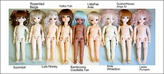 ALL my YOSD size girls (Teka e Fabi) Tags: topf25 colors cores pumpkin beige bonecas dolls foto shot tan kitty collection size popcorn cashmere oreo volks lollipop delf sizes ciaobella hani yuh creamy glee comparativa ante comparision lindt emeline customhouse coleo bjds yosd tamanhos leekeworld bambicrony tekaefabi soomdoll rosenlied angeai littlefee lutshoney