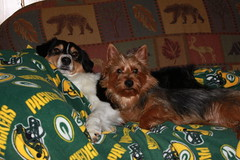 Watching the Packers with Molly!
