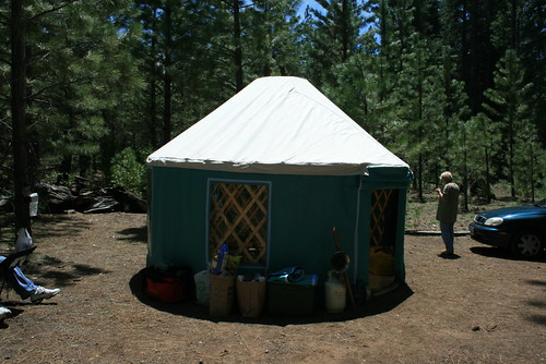 Yurt in Forest