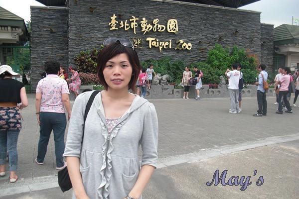 990522台北動物園 181