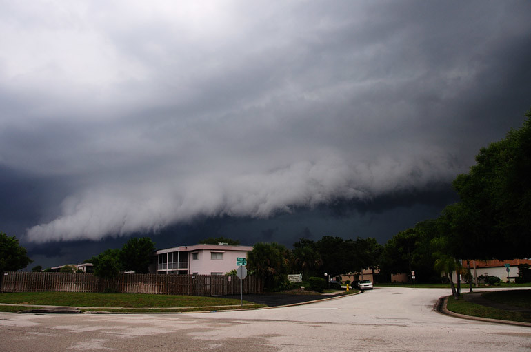 web_shelfcloud_parkwaystorm_0004_2738