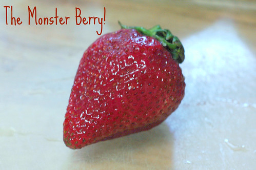 monster berry