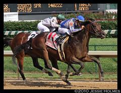 Blame Wins the Stephen Foster Handicap (Spruceton Spook) Tags: horses kentucky louisville horseracing churchilldowns blame stephenfoster garrettgomez