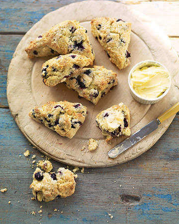mld104491_0609_blueber_scone_xl