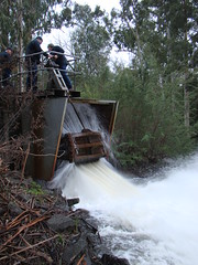 Operators Release Water from Maroondah Reservoir