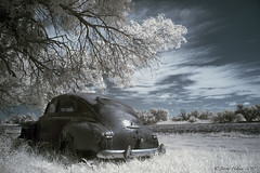 (ir guy) Tags: car southdakota ir decay rusty plymouth jeremy sd abandon infrared holmes colorinfrared crusty 2010 dakotas colorir jeremyholmes wwwirvisionscom
