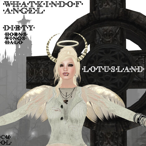 Lotusland What Kind of Angel - Dirty - 0L
