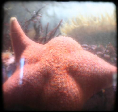 Patrick says hello
