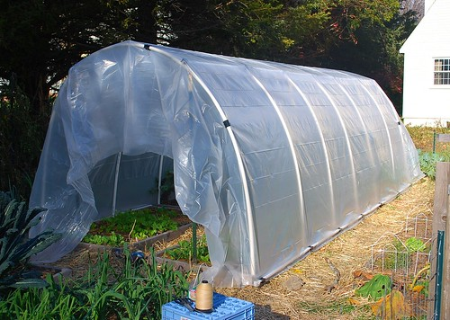 Building hoop house 9