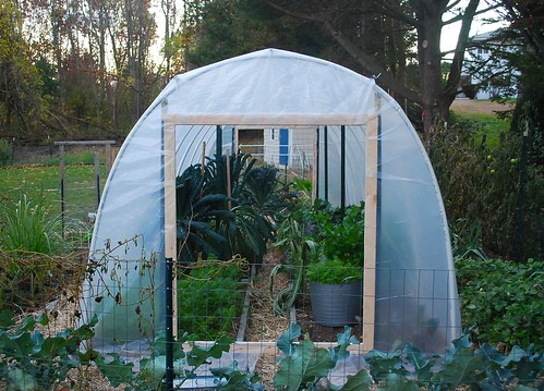 Building hoop house 16