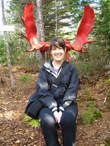 Antlers - Laura