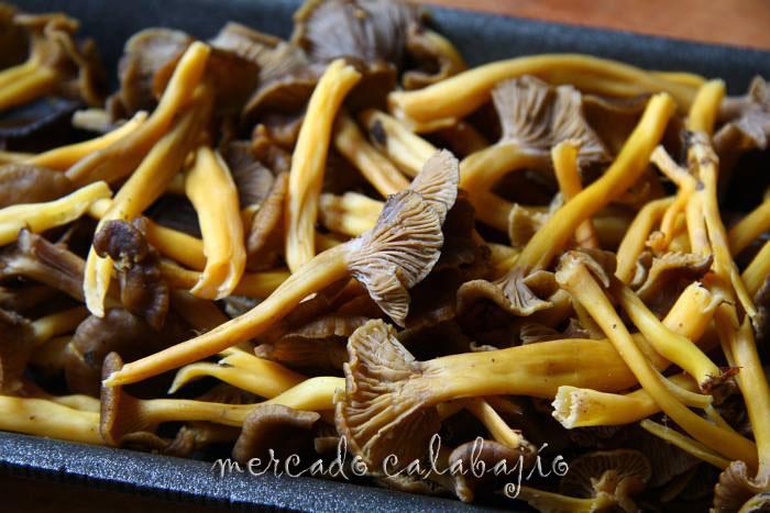 Como Cocinar Angulas   Angulas De Monte Trompeta Amarilla O Camagroc Mercado Calabajio