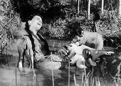 """Dry Summer (1964)"" on MUBI"