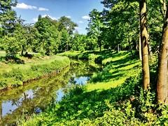 An der Rems (almresi1) Tags: river flus remstal tree bäume wasser water summer green