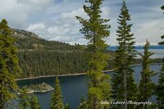 Lake Tahoe (Anna Calvert Photography) Tags: laketahoe nevada lake california trees nature landscape snow snowcappedmountains northtahoe tahoesouth sierranevada freshwaterlake scenery emeraldbay