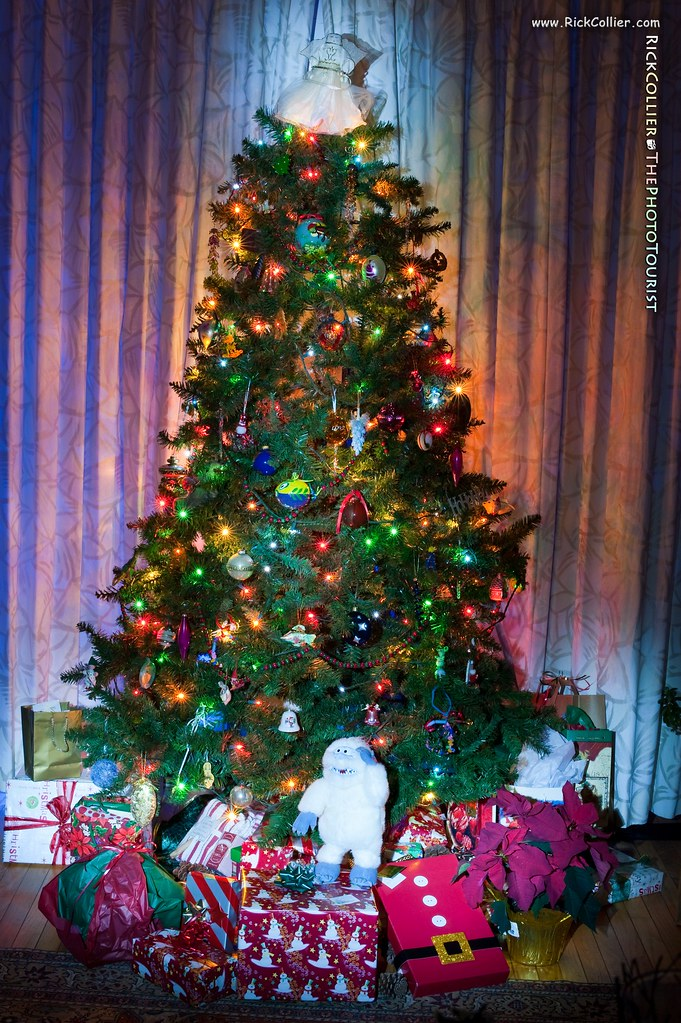 A Christmas tree decorated with lights and ornaments, and presents beneath the tree.