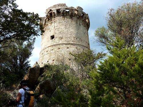 Arrivée à la tour de Capu Neru