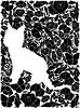 Cat Gestalt