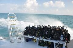 Belize 2009: The Blue Hole
