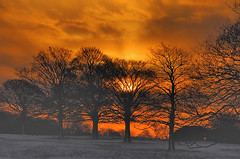 Winter Sunset (Cheng I) Tags: uk winter sunset red england cloud sun snow colour tree nature bbc hull looknorth chengi