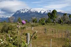 De Esquel para Futaleofu (Latitude 56 - Expedio Patagnia) Tags: argentina amrica do natureza sul expedio aventura fronteira coyaque