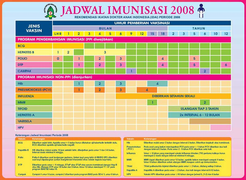 immunisation schedule for baby in indonesia   living in indonesia      rh   livinginindonesiaforum org