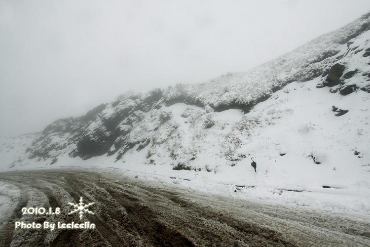 南投合歡山雪景