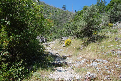 En äldre stenlagd stig