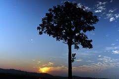 witness of the rise 0I (:: tujuhjiwa / sevensouls ::) Tags: longexposure blue sky orange sun sunrise ads for photo skies sale hill © stock stocks crop malaysia rise awan johor allrightsreserved 2010 langit adverts bahru matahari bayang nd400 landscapephotos nikond90 nusajaya puteriharbour kotaiskandar tujuhjiwa nikkor18mm108mm adjustablendfilter faberndfilter