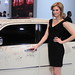 Golden Globe Awards Autographed Car - Model Nicole Orion