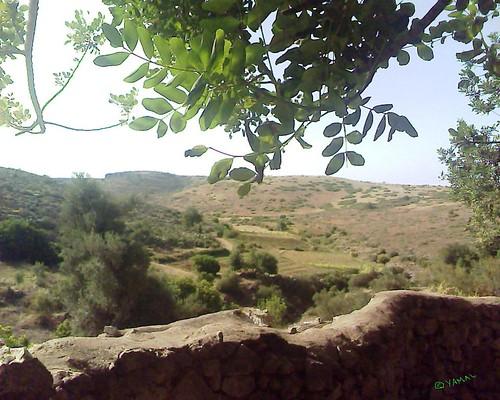Sidi Ali Yakhlef Beni Znassen سيدي علي يخلف جبال بني يزناسن