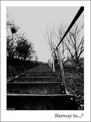 Stairway to....? (Noeky1980 Photography) Tags: city blackandwhite bw white black monochrome stairs canon photography fotografie zwartwit magic stairway nights grayscale dslr landschaftspark duisburg zwart wit trap blackand stairwaytoheaven 1001 zw trappen nuray spiegelreflex 400d canon400d flickraward noeky noeky1980 astairwaytoheaven grijswaarde nuray1980 noeky1980photography monogroom