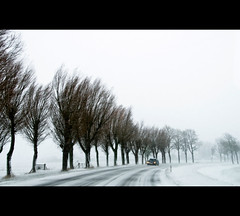 Time to go home... (Dani℮l) Tags: winter holland netherlands daniel sneeuw nederland groningen blizzard carwindow januari 2010 d300 timetogohome sauwerd winsum sneeuwjacht stuifsneeuw adorp agreatdrive