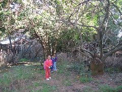 IMG_0393 (SANDRIUX) Tags: mountain mexico los leon domingo monterrey domingos nuevo chipinque montaa