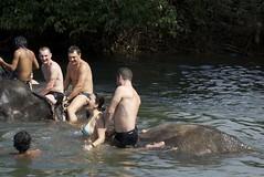 Bath with the elephant