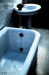 . (A Great Capture) Tags: toronto ontario canada castle abandoned tile casa scary sink can tub to bathtub washroom notinuse on casaloma monocrhome ald torontophotographer ash2276 ashleyduffus ashleysphotography casalomajan2010 ©ald ashleysphotographycom ashleysphotoscom ashleylduffus wwwashleysphotoscom