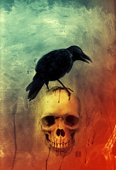 The Raven (Ben Templesmith) Tags: art comics skull horror crow mccain palin theraven templesmith