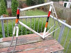 raleigh professional (Arnoooo) Tags: red england orange white black bike vintage cycling carlton steel raleigh professional 1968 seatpost campagnolo lugs chromed weinmann reynolds531 bicycycle cinellistyle