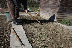 cavant (dakayalive) Tags: camp basto cavar eixada