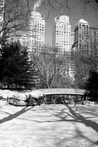 New-York_Feb052009_0906BWweb