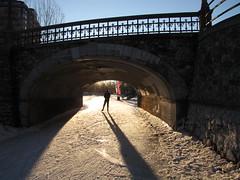 Rideau Canal 019