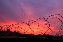 42.365_barbed_wire_sunset