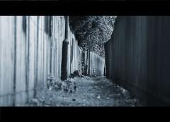 Alleyway (ihughes22) Tags: alleyway knowsley huyton bluemagic superphotographer nikondigitalmagic mywinners nikond40 ithinkthisisart picturesworthathousandwords merseysideselect artofimages worldmasterpieceaward nikond40shootersalley thedarkhorseaward mygearandme ihughes22
