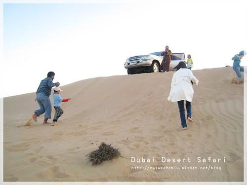 Dubai desert safari6
