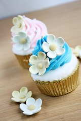 Blue & pink cupcakes