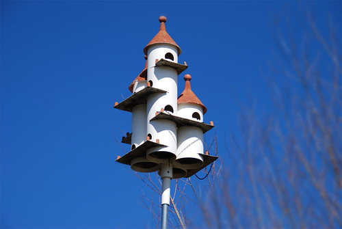 Cinderella-Bird-House